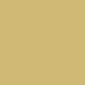 absolute beige Corian