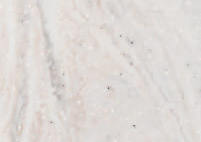 Limestone Prima ⱴ